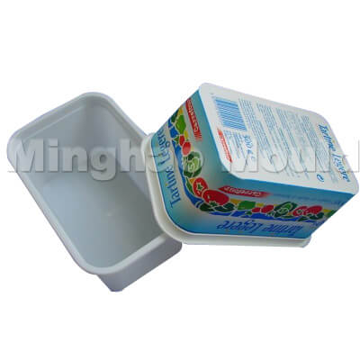Ice Cream Box Mould 07