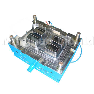 Core of Thin Wall Mould